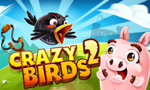 crazy-birds-2